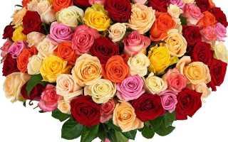 Как правильно дарить цветы по этикету
