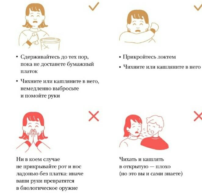 Правила чихания
